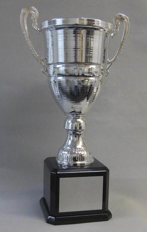 Big Silver Cup Thumbnail