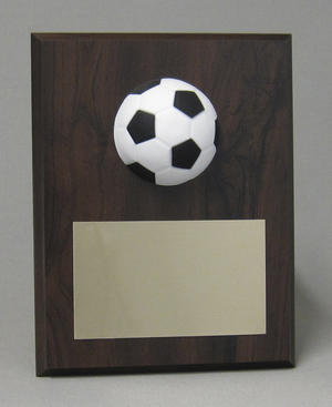 Sports Ball Plaque Thumbnail